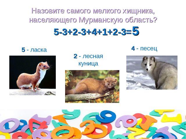 Назовите самого мелкого хищника, населяющего Мурманскую область? 5-3+2-3+4+1+...