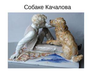 Собаке Качалова