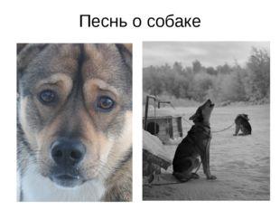 Песнь о собаке