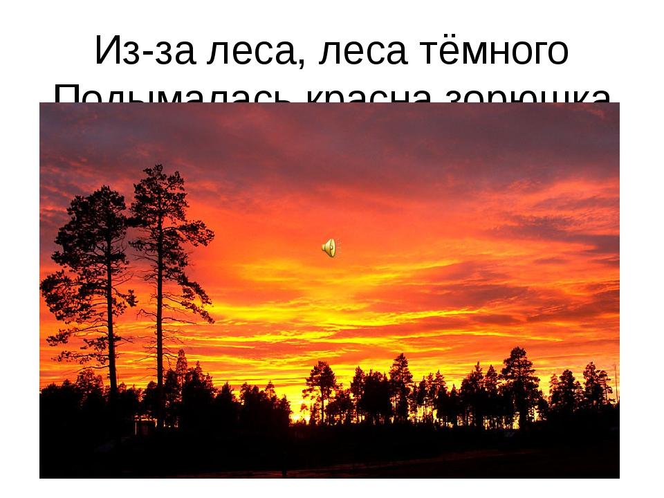 Из-за леса, леса тёмного Подымалась красна зорюшка