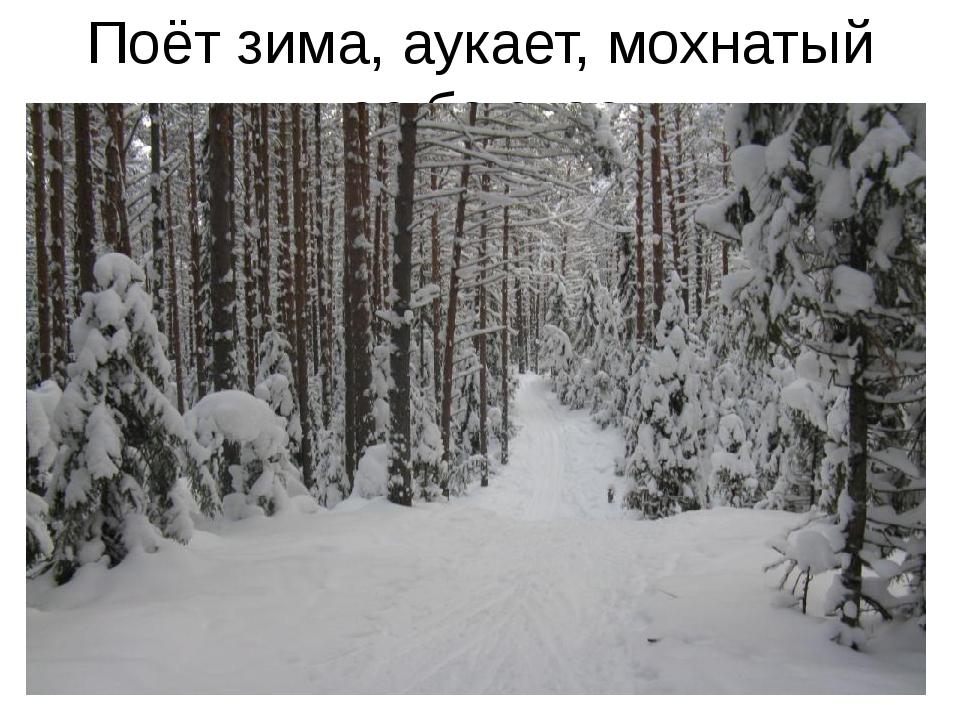 Поёт зима, аукает, мохнатый лес баюкает