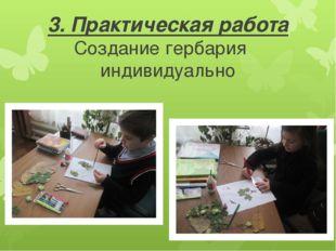 3. Практическая работа Создание гербария индивидуально