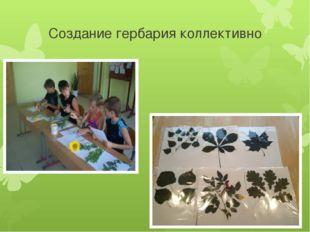 Создание гербария коллективно