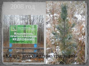 2008 год «Кедр – возрождение традиций»