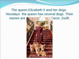 The queen Elizabeth II and her dogs. Nowdays the queen has several dogs. Thei