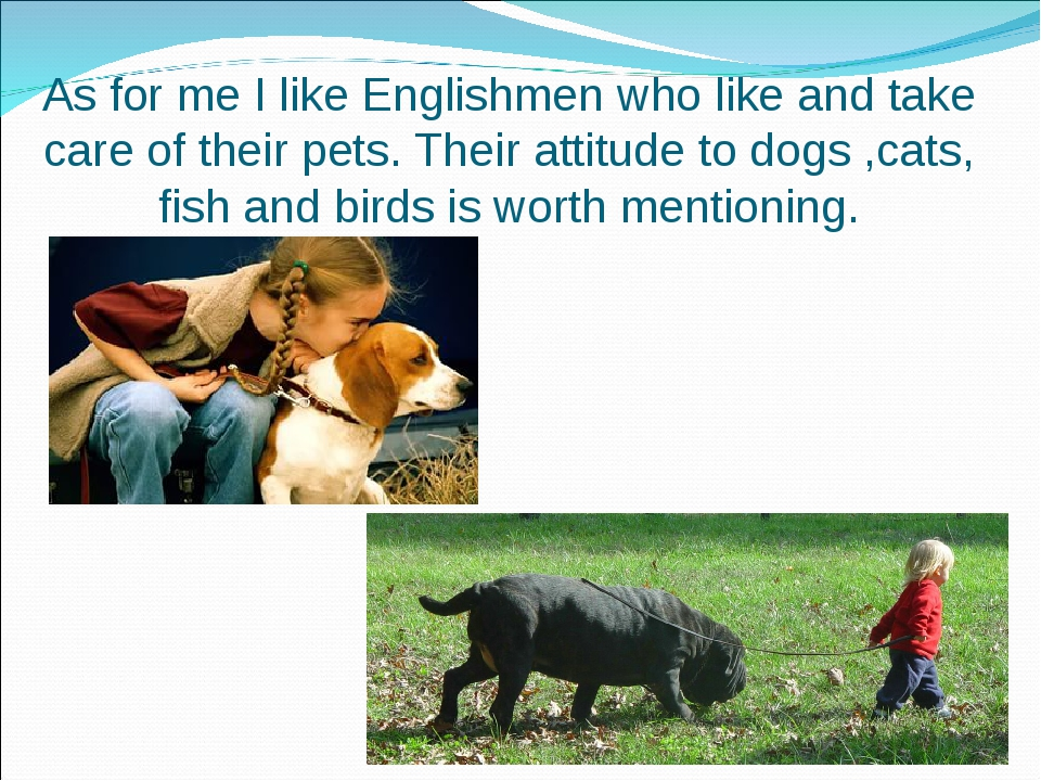 As for me I like Englishmen who like and take care of their pets. Their attit...