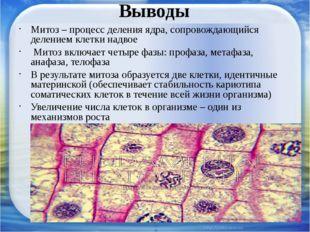 Выводы Митоз – процесс деления ядра, сопровождающийся делением клетки надвое