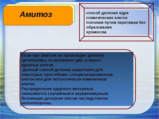 Амитоз Если при амитозе не происходит деление цитоплазмы, то возникают дву- и...