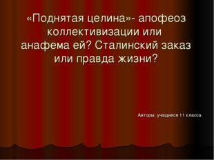 «Поднятая целина»- апофеоз коллективизации или анафема ей? Сталинский заказ и
