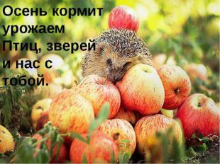 Осень кормит урожаем Птиц, зверей и нас с тобой.