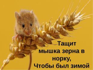 Тащит мышка зерна в норку, Чтобы был зимой обед.