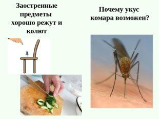 Заостренные предметы хорошо режут и колют Почему укус комара возможен?