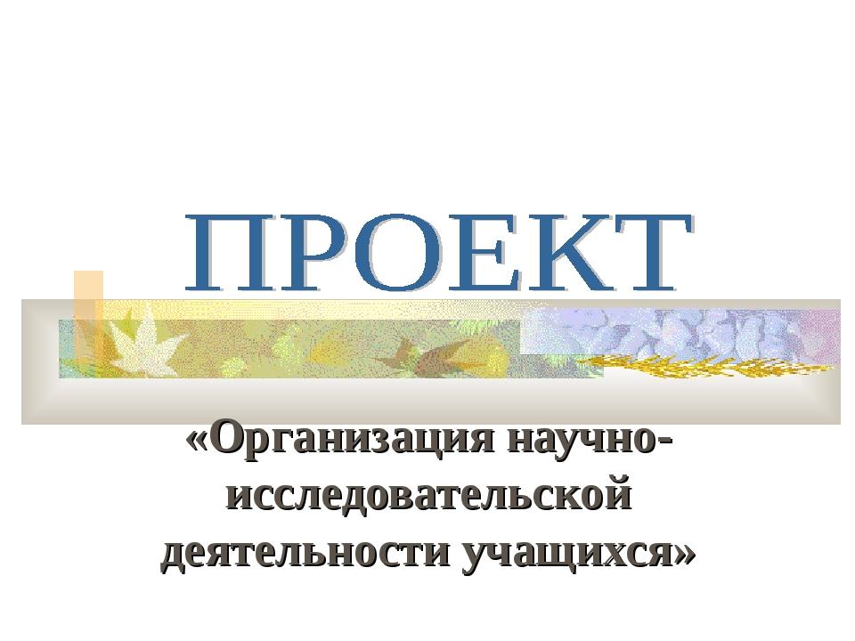 «Организация научно-исследовательской деятельности учащихся»