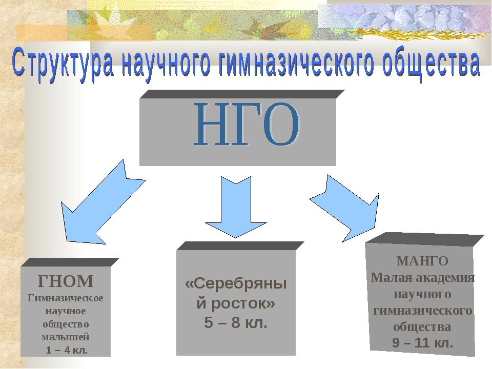 ГНОМ Гимназическое научное общество малышей 1 – 4 кл.  «Серебряный росток»...