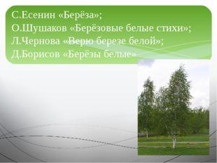 С.Есенин «Берёза»; О.Шушаков «Берёзовые белые стихи»; Л.Чернова «Верю березе