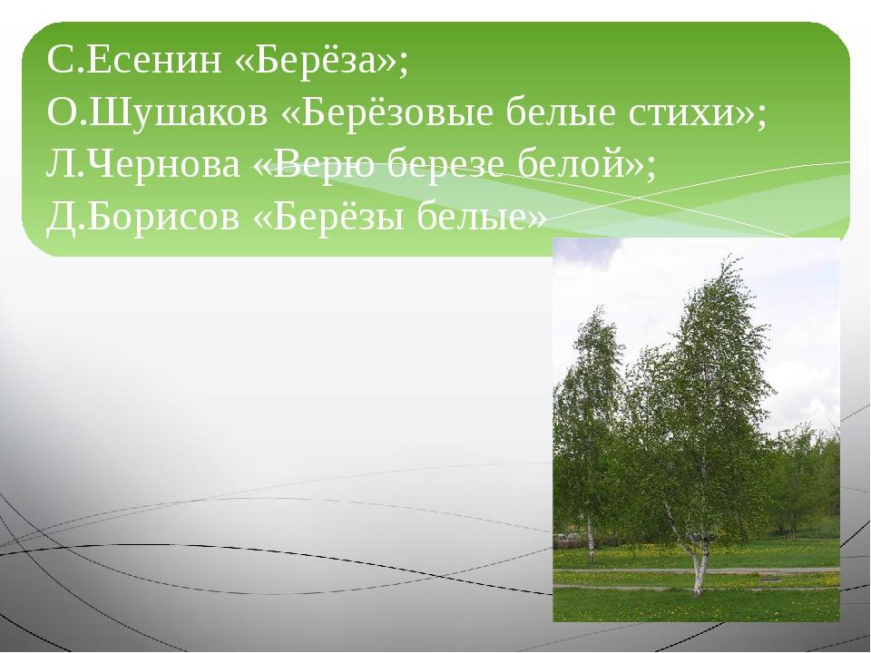 С.Есенин «Берёза»; О.Шушаков «Берёзовые белые стихи»; Л.Чернова «Верю березе...