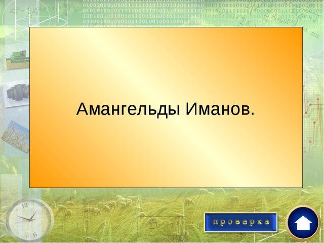 Кто руководил Тургайским центром движения ? Амангельды Иманов.