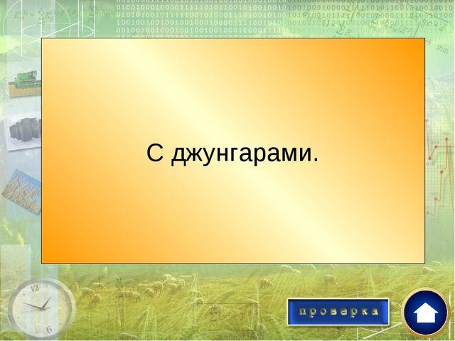 С кем воевали казахи в годы «великого бедствия»? С джунгарами.