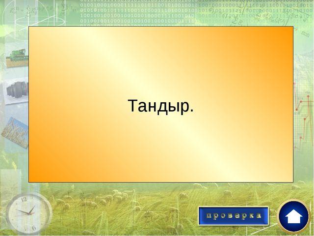 Как называется глиняная печь в Средней Азии? Тандыр.