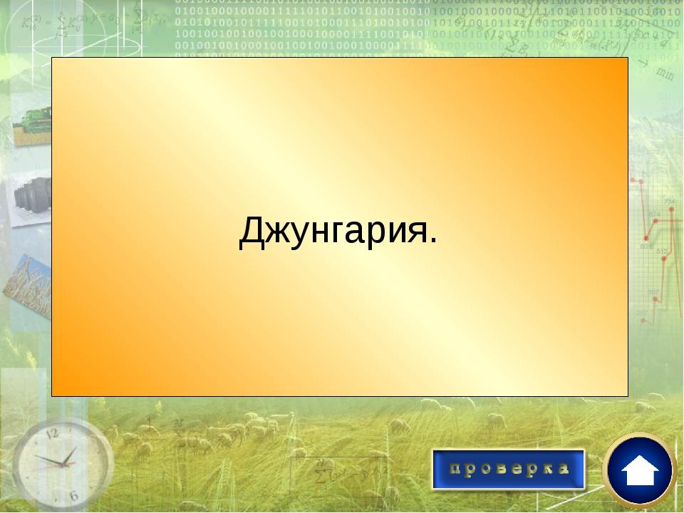 Какое государство представляло наибольшую опасность для Казахского ханства в...