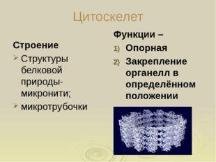 Гладкая зндоплазматическая сеть Строение: система мембранных мешочков; Образу