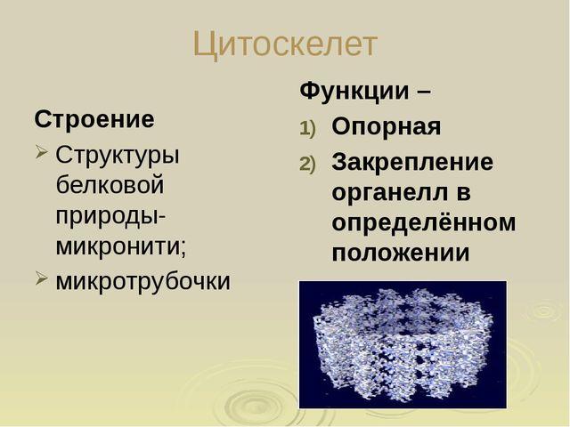 Гладкая зндоплазматическая сеть Строение: система мембранных мешочков; Образу...