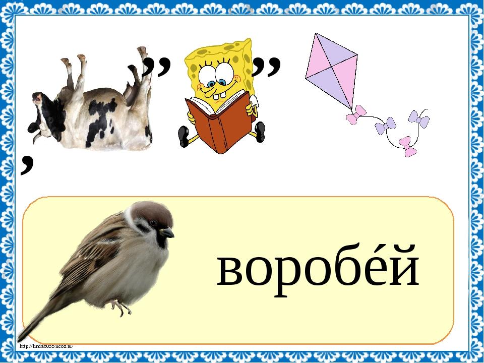 Ребусы с картинками птиц