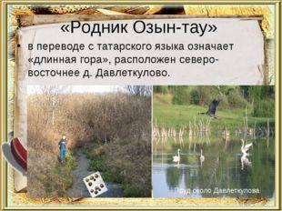 «Родник Озын-тау» в переводе с татарского языка означает «длинная гора», расп