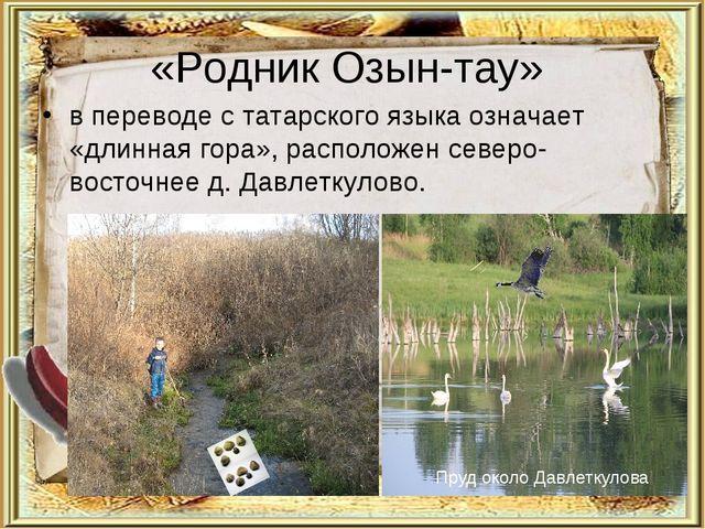 «Родник Озын-тау» в переводе с татарского языка означает «длинная гора», расп...