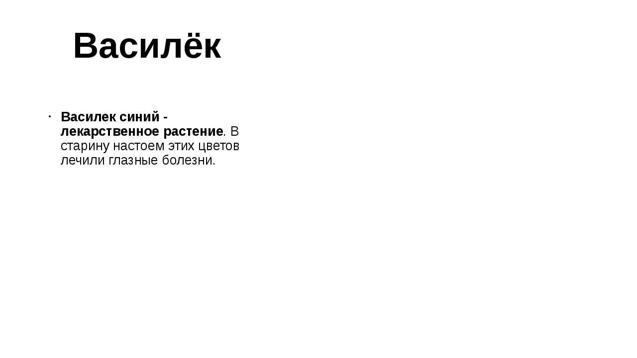 Василёк Василек синий- лекарственное растение. В старину настоем этих цветов...