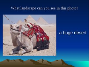 What landscape can you see in this photo? a huge desert