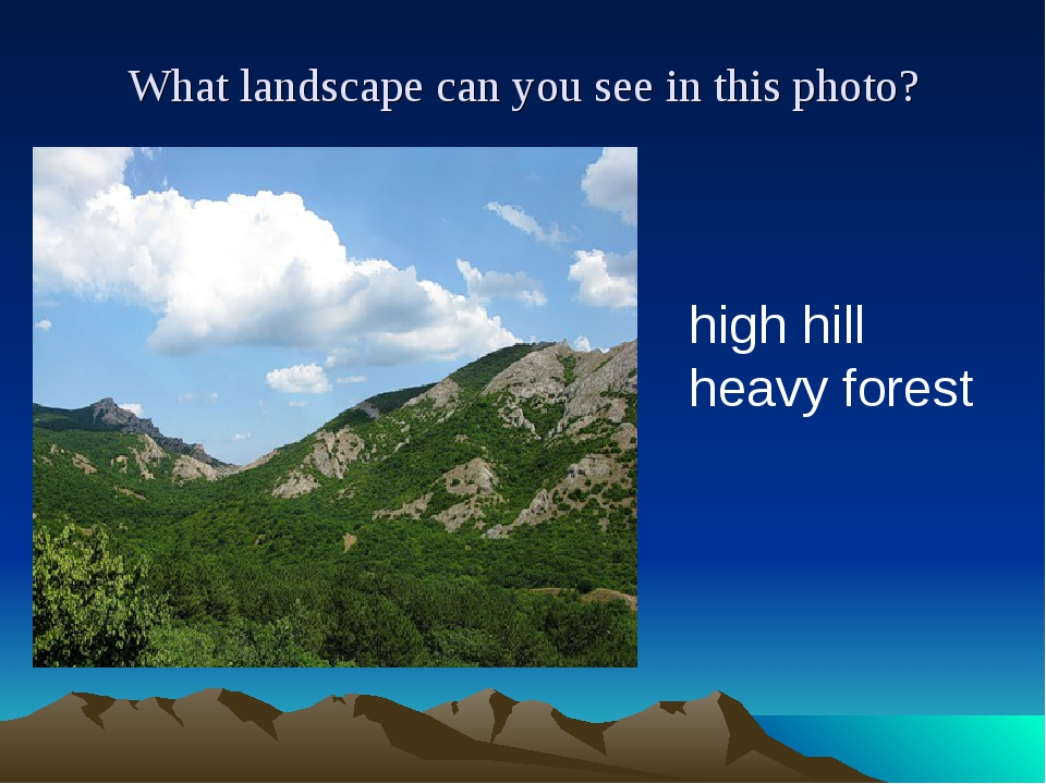 What landscape can you see in this photo? high hill heavy forest