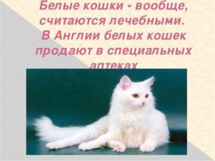 Белые кошки - вообще, считаются лечебными. В Англии белых кошек продают в спе