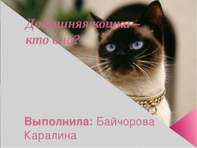 Домашняя кошка – кто она? Выполнила: Байчорова Каралина ученица 3 «А» класса...