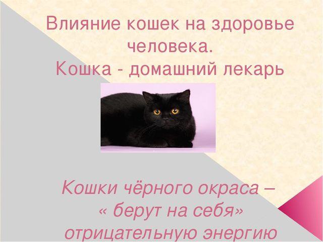 Влияние кошек на здоровье человека. Кошка - домашний лекарь Кошки чёрного окр...