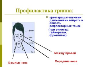 Профилактика гриппа: крем вращательными движениями втирать в область рефлекто