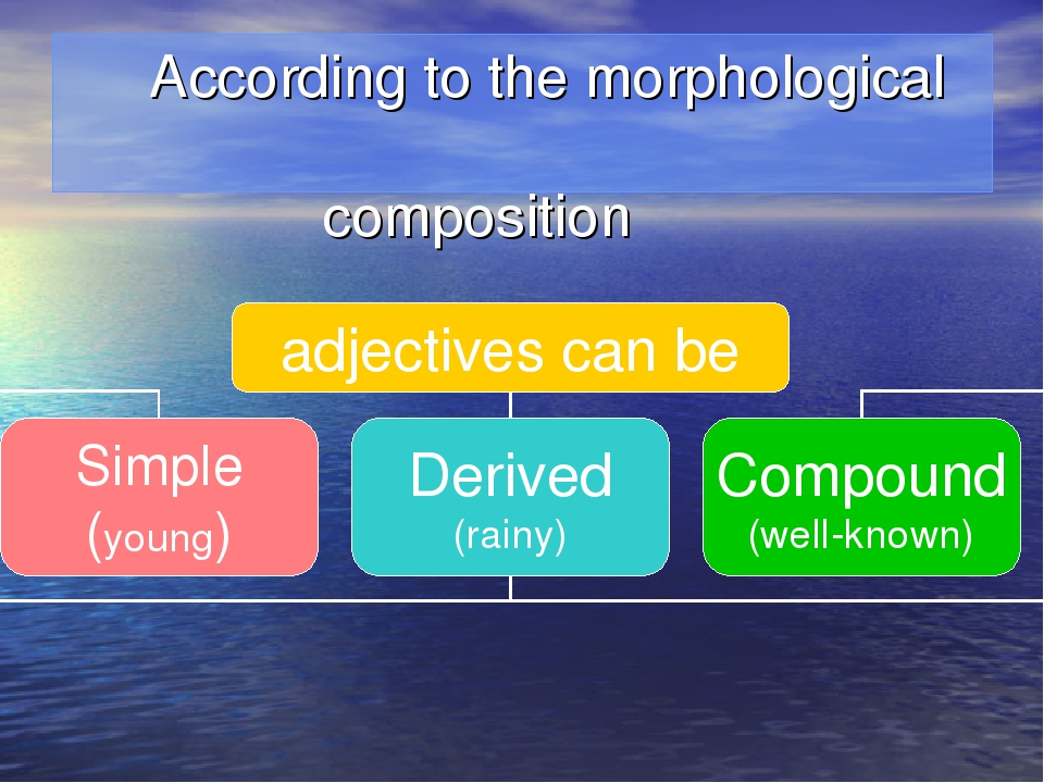 According to the morphological composition