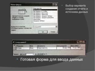 Выбор варианта создания отчета и источника данных Готовая форма для ввода дан