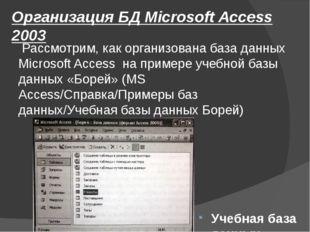 Организация БД Microsoft Access 2003 Рассмотрим, как организована база данных
