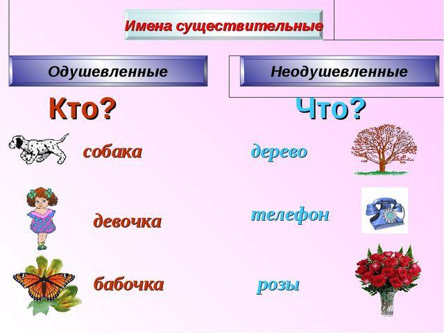 Кто? Что? собака девочка бабочка розы телефон дерево