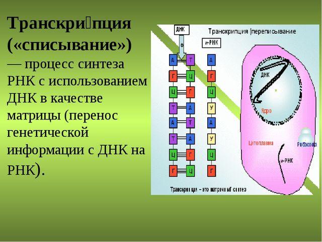 Транскри́пция («списывание») — процесс синтеза РНК с использованием ДНК в кач...