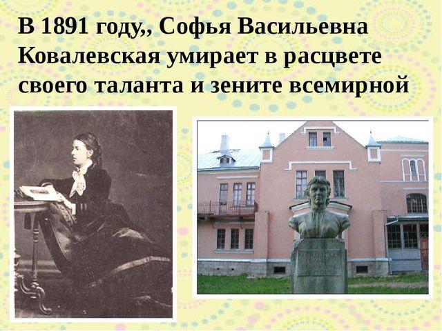 В 1891 году,, Софья Васильевна Ковалевская умирает в расцвете своего таланта...