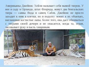 Американка Джейнис Хейли называет себя мамой тигров. У нее в саду в Орландо,