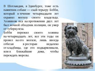 В Шотландии, вЭдинбурге, тоже есть памятник собаке— скай-терьеру Бобби, кот