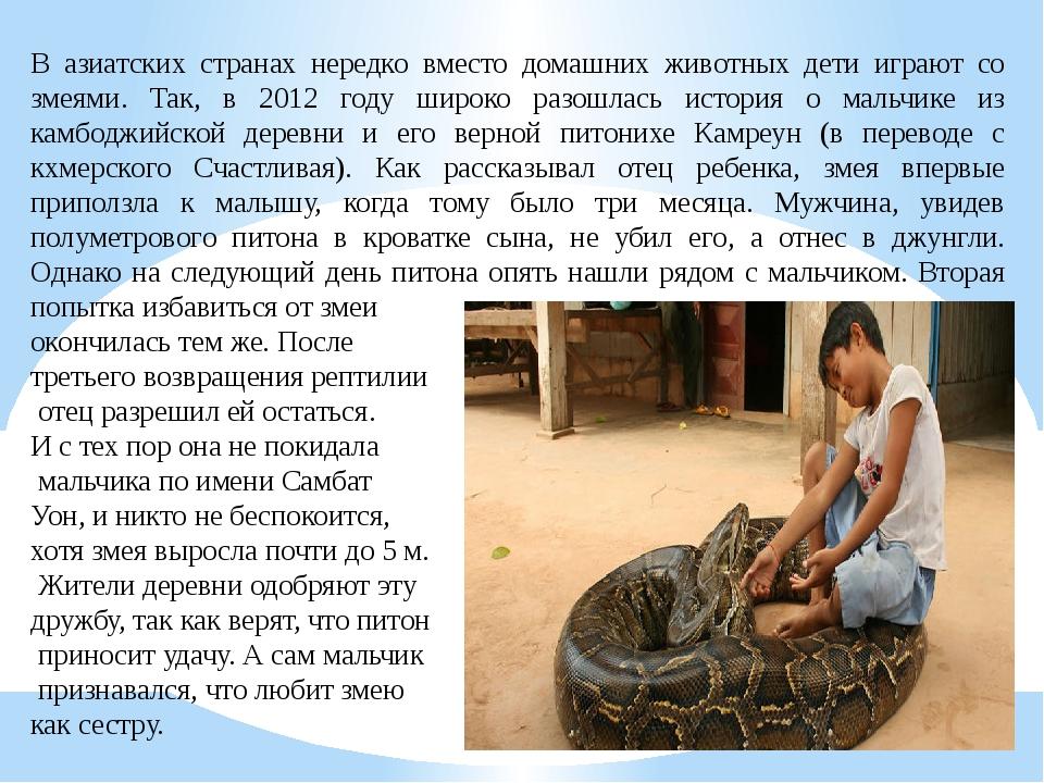 В азиатских странах нередко вместо домашних животных дети играют со змеями. Т...