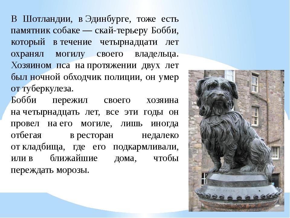 В Шотландии, вЭдинбурге, тоже есть памятник собаке— скай-терьеру Бобби, кот...