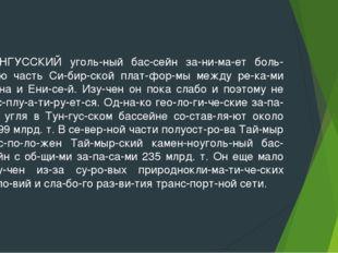 ТУНГУССКИЙ угольный бассейн занимает большую часть Сибирской платфо