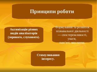 Принципи роботи Активізація різних видів аналізаторів (зорового, слухового).