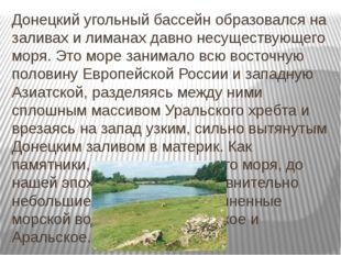 Донецкий угольный бассейн образовался на заливах и лиманах давно несуществующ