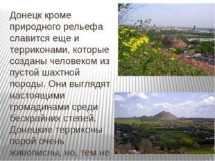 Донецк кроме природного рельефа славится еще и терриконами, которые созданы ч
